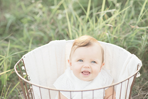 baby photographer houston reviews rebecca penny photography